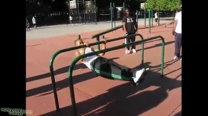 Zef Zakaveli - best moments Workout