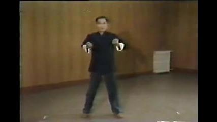 Wing Chun - Yip Man & Yip Chun 4