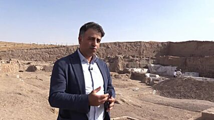 Turkey: 4,000 year old olive pits uncovered at archaeological site near Syrian border