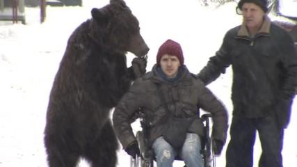 Мечок бута треньора си в инвалидна количка