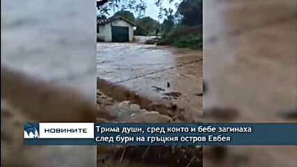Трима души, сред които и бебе загинаха след бури на гръцкия остров Евбея Type a message