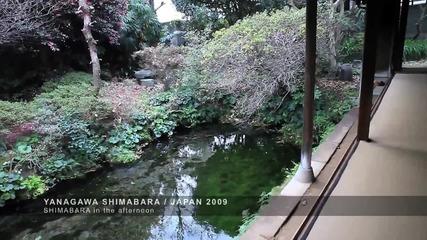Разходка в Янагауа и Шимабара