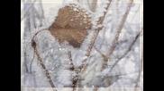 Сняг бавно пада