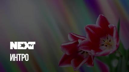 NEXTTV 038: Интро