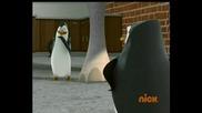 The Pinguins of Madagascar сезон 1 епизод 41