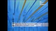 Титли за Лохте, Нин, Хоши, Фу и женската щафета на САЩ на 200 м на световното по плуване