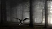 tunna Beatz - Broken Wings