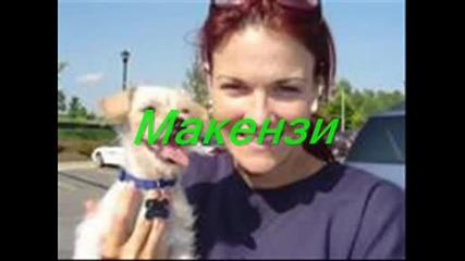 Кучетата На Amy Dumas