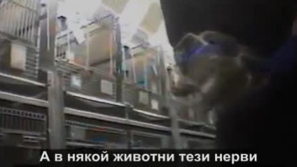 Земляни - документален филм