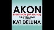 Kat Deluna Ft Akon - Right Now - Remix
