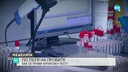 Как се прави антигенен тест и колко надежден е той