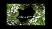 Алелуя - превод