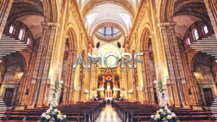Amorf - Safety