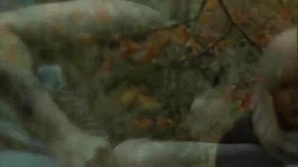 Anya Marina - Satellite Heart Offical Video