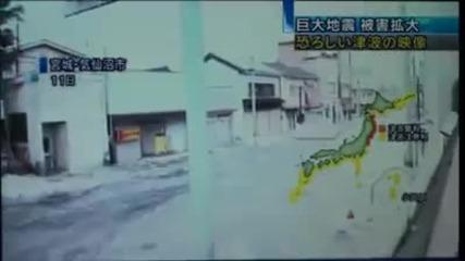 Брутални кадри от цунамито в Япония.