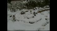 Lgb Gartenbahn - Снегорин