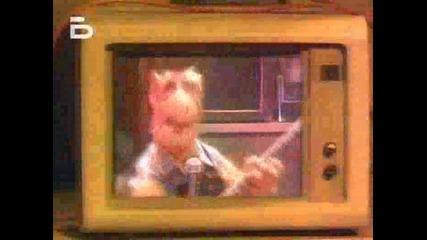 Alf.1x08