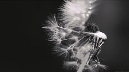Vincent De Moor - Fly Away (sean Tyas Remix)