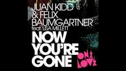 Juan kidd & felix baumgartner - now you are gone /radio edit/