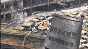 Пожар унищожи над 500 коли в Южна Корея