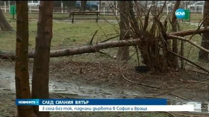 След силния вятър – села без ток, паднали дървета