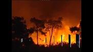 Португалия поиска помощ от ЕС за справяне с пожарите