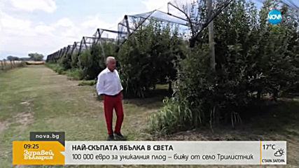 Фермер от Пловдивско произвежда ябълка за 100 000 евро