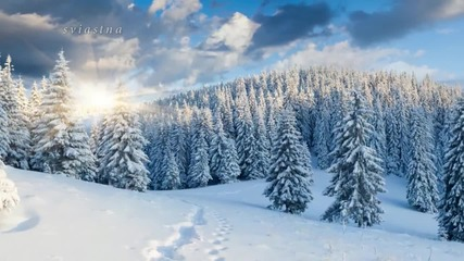 Красотата на зимата..