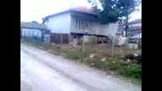 Bas Tubasi Ucusu 2014 Hd