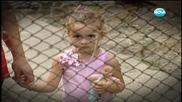 Един месец след потопа в Мизия. Репортаж на Даниел Петканов - Часът на Милен Цветков (05.09.2014)