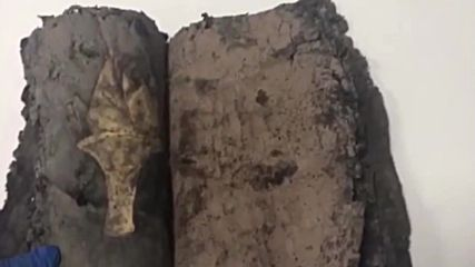 Turkey: 1,200-year Bible seized in Diyarbakir, 6 detained for smuggling