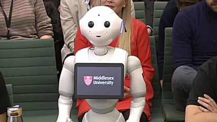 UK: 'Emotionally aware' robot tells MPs she has 'an important role to play'