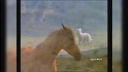 Легенда за коня