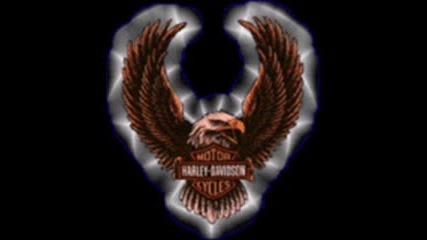 An Awesome Harley Davidson Dragon Riders