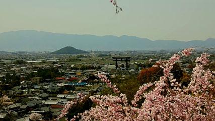 Свещените гори на Япония (Без багаж еп.198 трейлър).