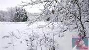 Честит Първи Сняг (колко оригинално) Fernweh - Snowflakes ( Melokind Remix ) & видео