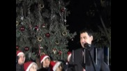 Запалиха коледните елхи в Пловдив