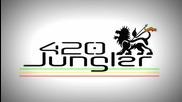 [reggae Dnb]future Prophecies - Fire Bun (dj Panik Remix)