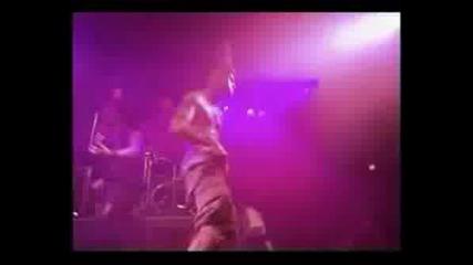 Pantera - The Art Of Shredding