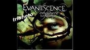 Превод!!! Evanescence - Bring Me To Life