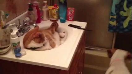 Мацо и аз искам да се измия