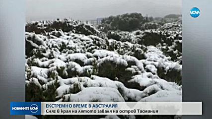 Сняг в края на лятото на остров Тасмания