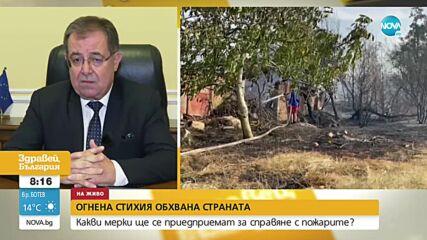 Проф. Бозуков: За две седмици ще забраним дейностите в пасища и ливади