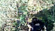 Agici Kokunden Cikardin Hercules 2019 Hd