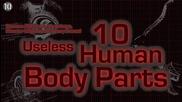 10 Безполезни човешки части от тялото