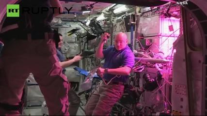 Астронавти ядат първата отгледана в космоса маруля