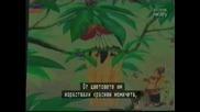 Сериозно за Н.Л.О 26 (Лилипути или Титани)