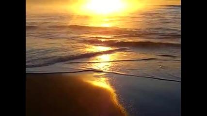 Nature Relaxation Soothing Sunrises on the Shores of Tasmania