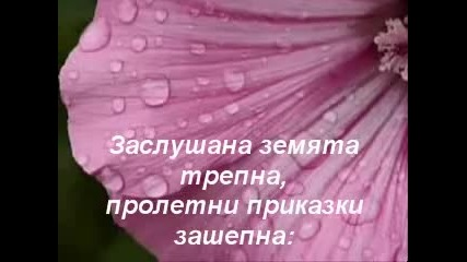 Пролетен дъжд !