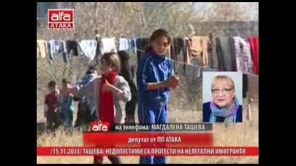Магдалена Ташева: недопустими са протести на нелегални имигранти 15.11.2013